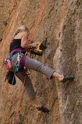Rock Climbing Photo: Emily bolting with Dewalt