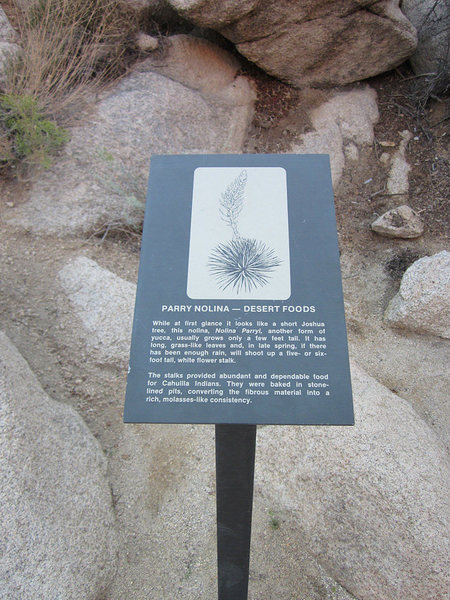 Rock Climbing Photo: If you stop to read this sign, Pud Saddler Rock is...