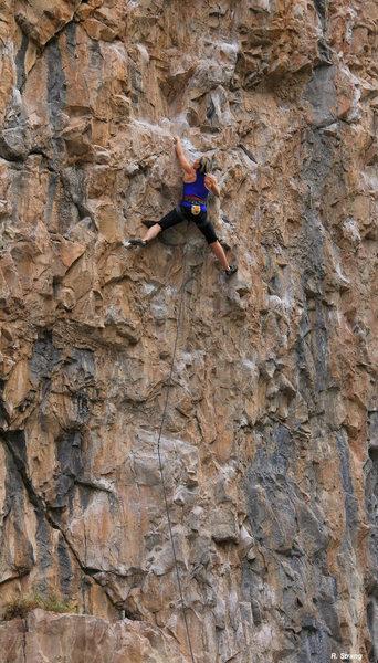 Rock Climbing Photo: Gabriela Baumeister climbing Fist Full of Dollars ...