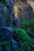 Rock Climbing Photo: Right Wall goodness.