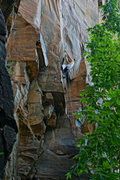 Rock Climbing Photo: Casey N. moving into No Utopia. You can place a #....