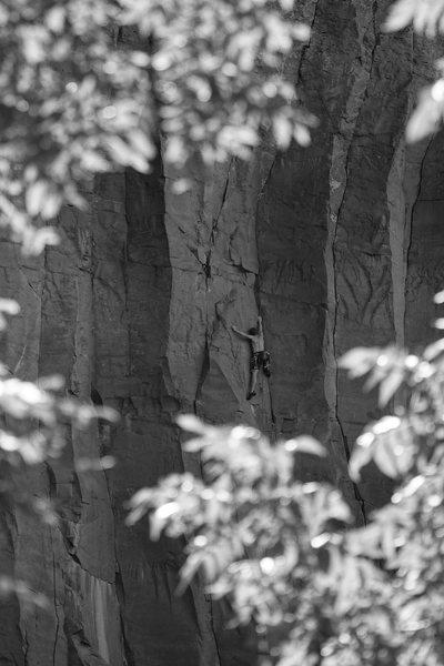 Rock Climbing Photo: Casey, coming to terms with No Utopia.