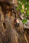 Rock Climbing Photo: Kevin, moving through the start of Natural Enhance...