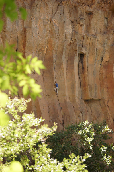 Darren Mabe moving into the original finger locking, toe smearing crux. You get a shake after that, and then it's steep 5.11 to the anchors.<br> <br> No Utopia is the next system left of him, and No Feelings is two to his right.