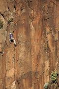 Rock Climbing Photo: Darren, Rising Sun