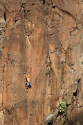 Rock Climbing Photo: JMo warming up on Ninja Warrior.