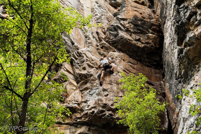 Ben K. climbing.