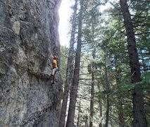 Rock Climbing Photo: Perin Blanchard on Reaver.