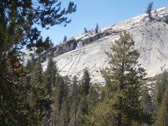 "Rock Climbing Photo: Slab location of Papa Bear top rope, a""Mama B..."