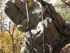 The free climb that is on the big boulder that houses venom and other good climbs. the route goes up and slightly left.