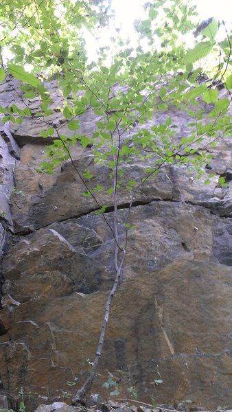 Rock Climbing Photo: Belgian Blonde and Evil Twin