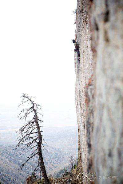 Rock Climbing Photo: Bean Fiddler.