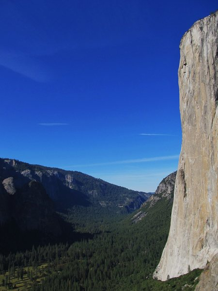 Rock Climbing Photo: The Nose, from the East Butt of ElCap