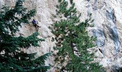 Rock Climbing Photo: Nick making the long clip.