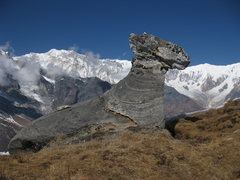 Rock Climbing Photo: super-cool rock @ 5,000m.  derai ramro-cha!!
