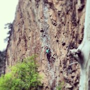 Rock Climbing Photo: Onsighting Feline (5.11b) in the rain...