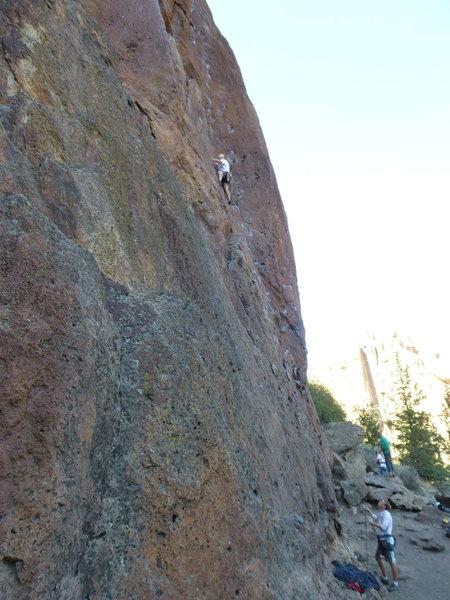 Rock Climbing Photo: Climbing Hissing Llamas.