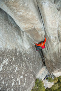 Rock Climbing Photo: East Butt El Cap, Climber Scott Wilson from Canand...