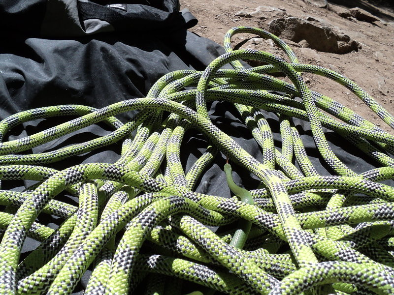 Brand new Edelrid rope makes friends quickly in Rifle Mountain Park.