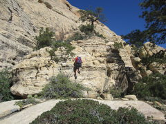 Rock Climbing Photo: If you approach from Pine Creek you will eventuall...