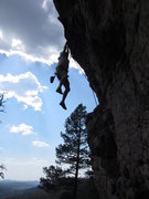 Rock Climbing Photo: Matt Bogar cuttn'loose in The Phishbowl