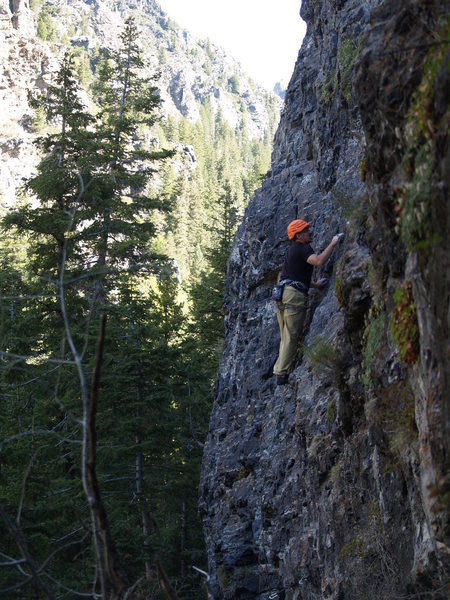 Rock Climbing Photo: DK checking out all of the cool pockets on Bushwha...