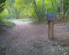 Rock Climbing Photo: Immediately to the right of the sign is the right ...