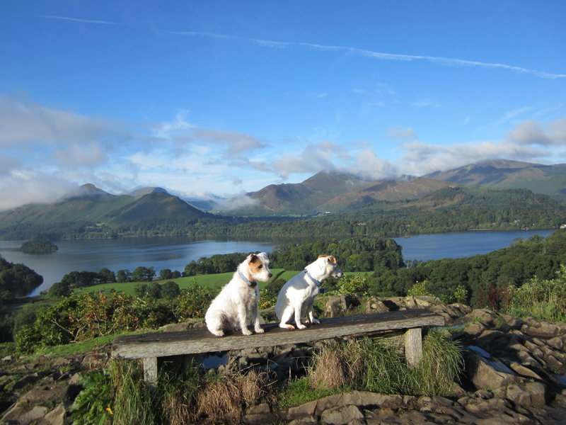 View from Castlehead, near Keswick, English Lake District