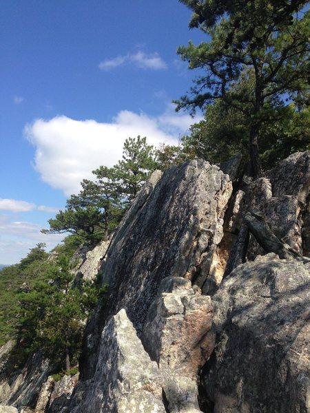 The ridge at Buzzard Rocks