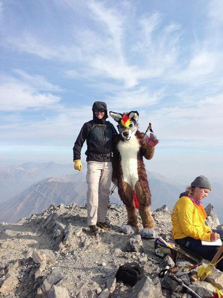 Rock Climbing Photo: Borah Summit w/ coyote.