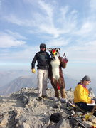 Rock Climbing Photo: Borah Summit w/ coyote.