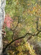 "Rock Climbing Photo: on the ""Best Seat in the House,"" 5.9"
