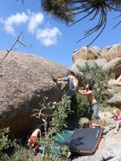 Rock Climbing Photo: Vedauvoo Bouldering