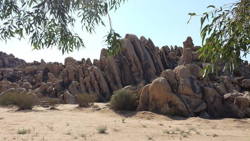 Rock Climbing Photo: Horsemans Center