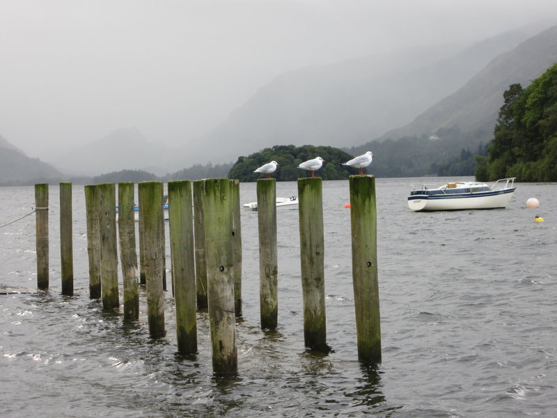 Misty day on Derwentwater .. Borrowdale