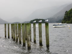 Rock Climbing Photo: Misty day on Derwentwater .. Borrowdale