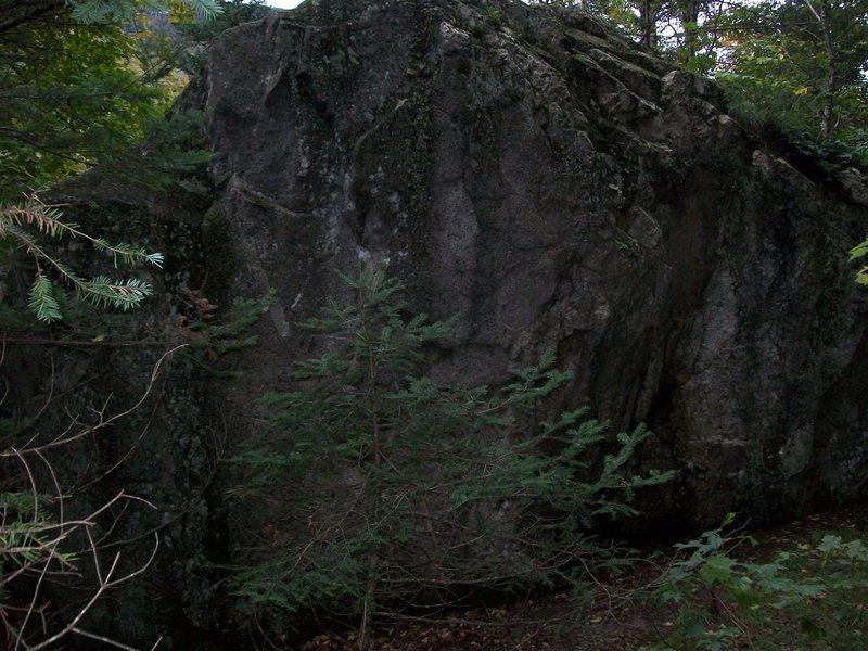 Rock Climbing Photo: Breeding pond boulder