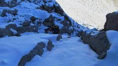 Rock Climbing Photo: Scrappy.
