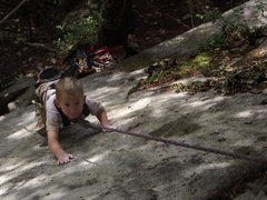 Rock Climbing Photo: Cursing up the slab