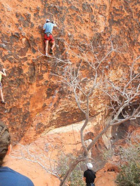 Rock Climbing Photo: panty wall