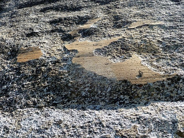Glacial polish on Punk Rock, Courtright Reservoir