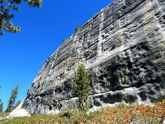 Rock Climbing Photo: The golden-hued middle section of Punk Rock, Court...