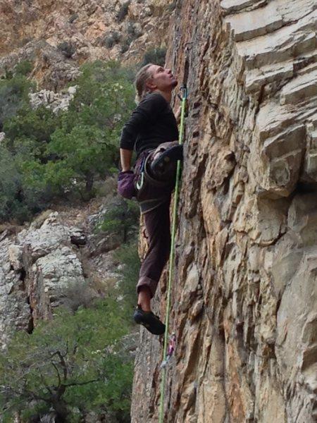 Rock Climbing Photo: Eying the anchors on Tough Guy.