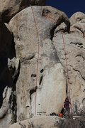 Rock Climbing Photo: Crystal Tips 5.10b Topo