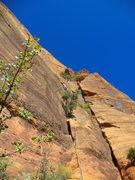 Rock Climbing Photo: Pitch 1 corner