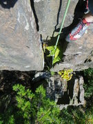 Rock Climbing Photo: The chimney at the top of Letterbox.  The jungle g...