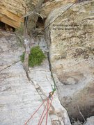 Rock Climbing Photo: Top of the climb.  The tree pictured here with the...