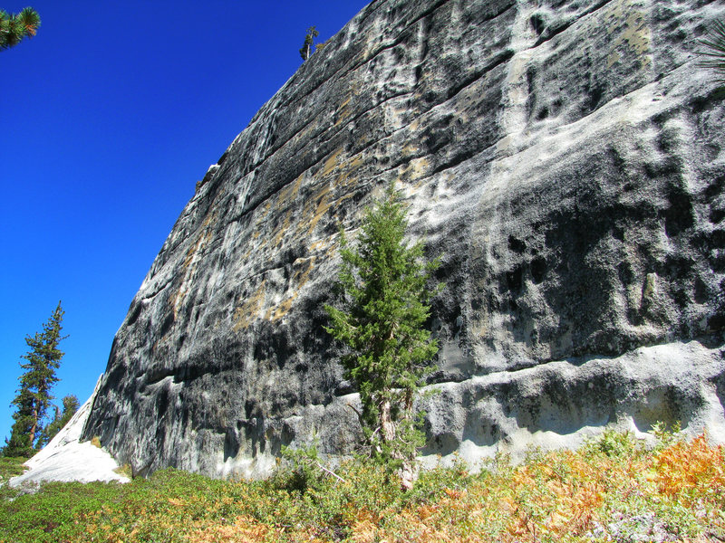 Rock Climbing Photo: Punk Rock