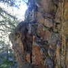 This is the slightly exposed walk off for the Ranch Hand.  Hand and footholds are abundant.  4th class.