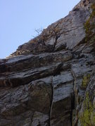 Rock Climbing Photo: Looking up the lower half of P1 at the dead tree l...